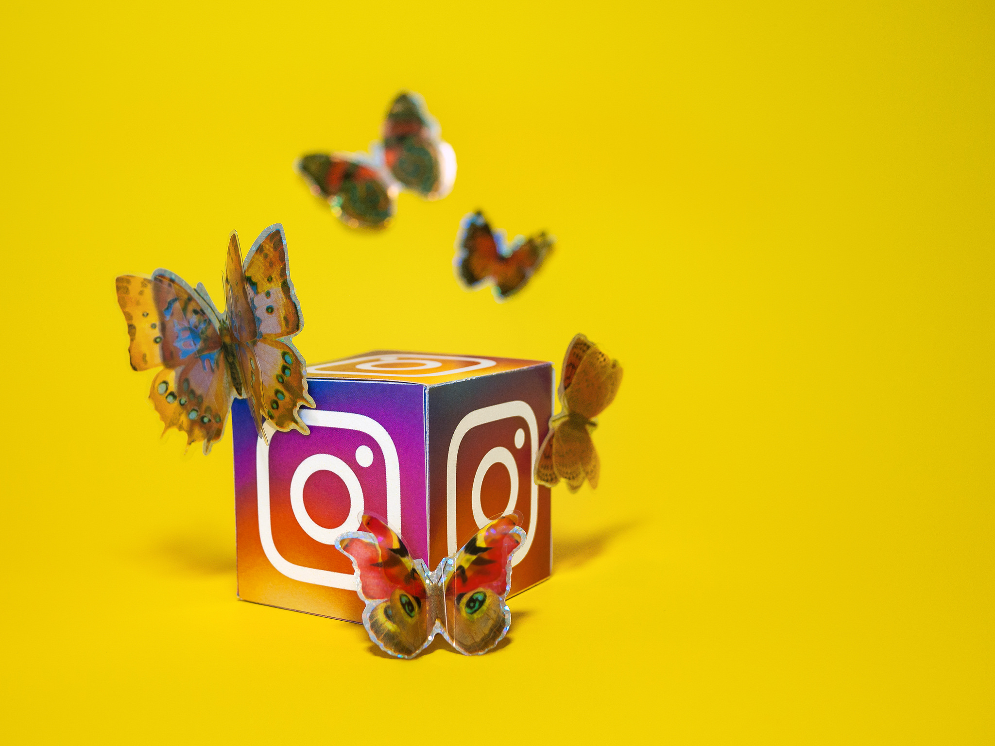 Social Media Butterfly - Instagram